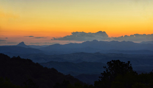 Dawn in Lamington National Park  Queensland