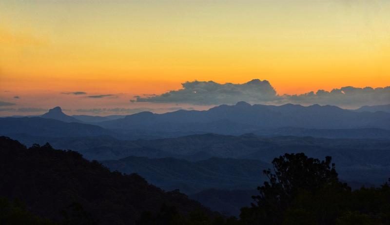 Dawn in Lamington National Park  Queensland