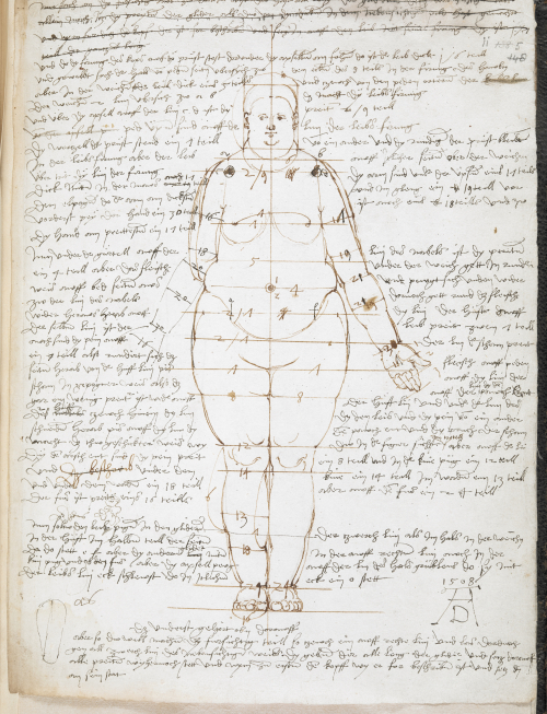 Proportion drawing of a 'stout woman' accompanied by measurements