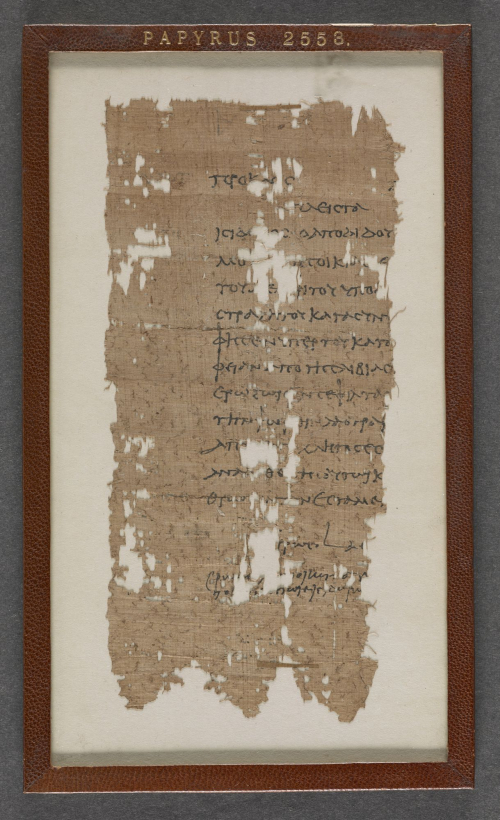 Left-hand portion of a papyrus sheet