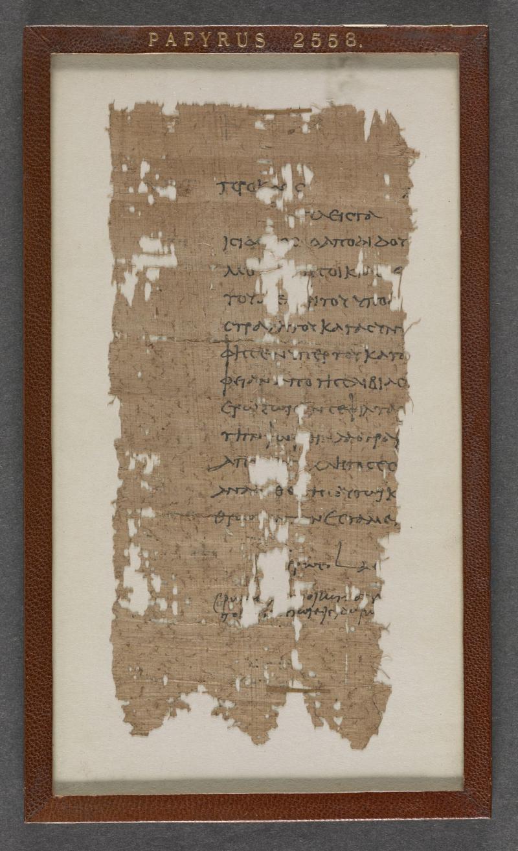 IMAGE 2 papyrus_2553_f001r