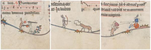Hare illustrations