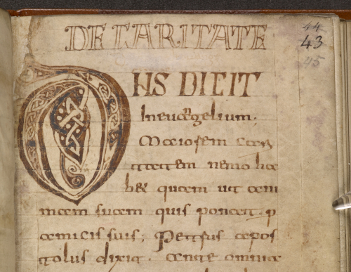 Detail of the top of a manuscript page with a large initial D in brown ink with some black or dark blue details.