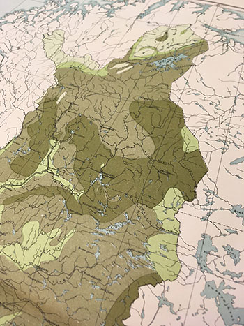 Atlas de Finlande, forests