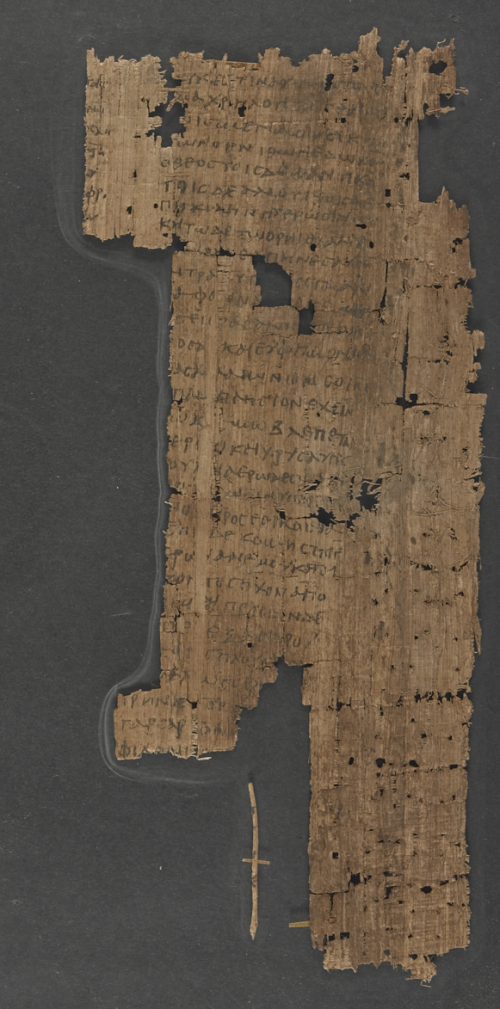 A fragmentary papyrus containing a school composition about the phoenix