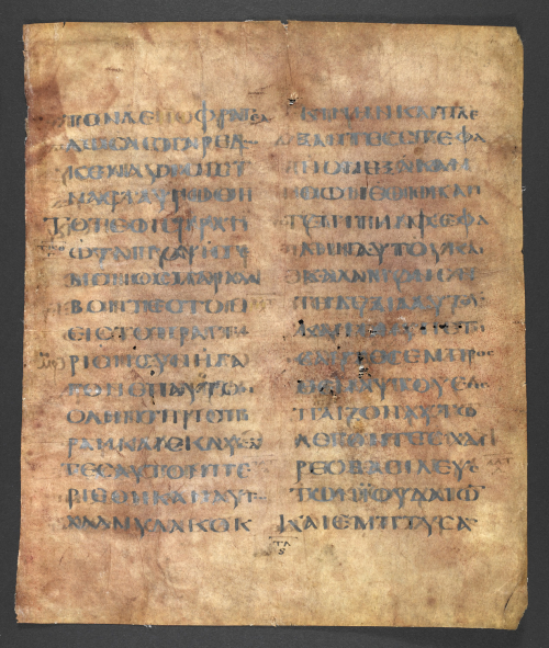 A page from the Codex Purpureus Petropolitanus, coloured purple with script in silver