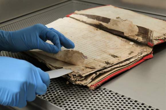 Picture 8: A still from a training video showing the separation of pages adhered together due to mould damage