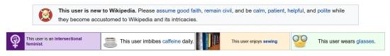 Screenshot of the the Wiki edito