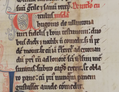 A text beginning with a large red initial and written in black ink in which a calf is healed by measuring it in dedication to Wulfsige in lines 6 and 7: 'ad honorem sancti Wlsini mensuratus' ('having been measured to the honour of Saint Wulsinus')