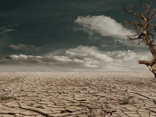 Desert landscape - Photo by '_Marion'