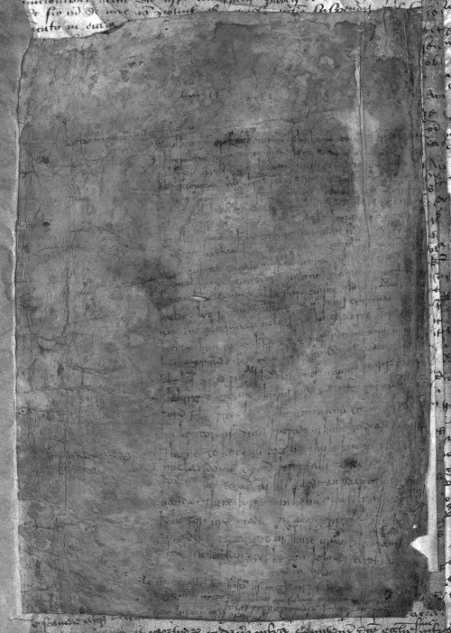 A medieval manuscript page that was previously treated with blue reagent, with the texts revealed by multispectral imaging