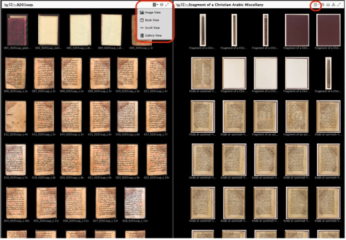 Screen shot of a black background with a matrix of thumbnails showing various pages of manuscripts