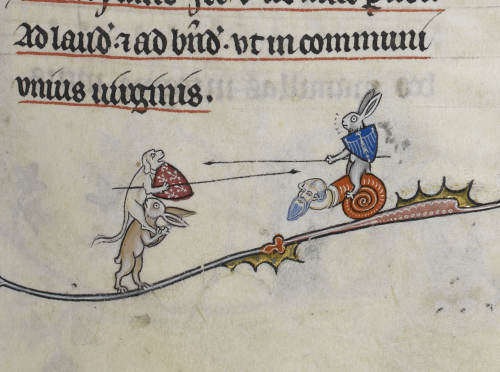 A hound riding on a rabbit and a rabbit riding on a snail battle with shields and lances